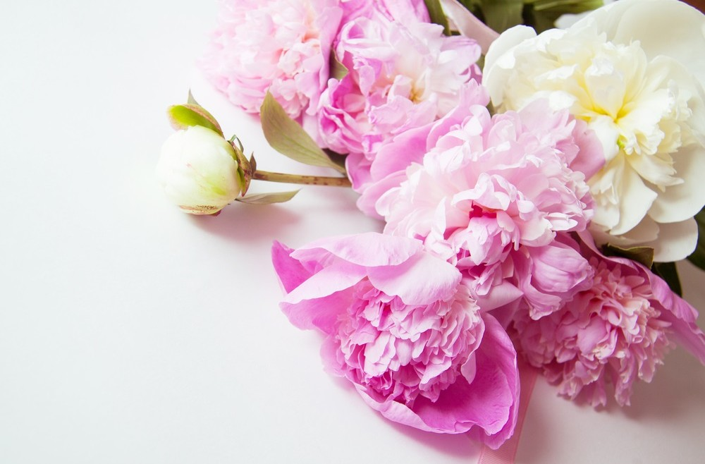 Flowers for Spring
