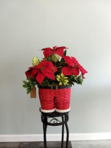 Flower All In Blooms Florist Christmas arrangement Roses